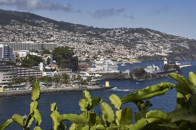 madeira funchal insel